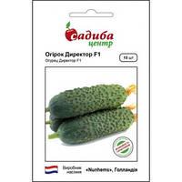 ДИРЕКТОР F1 / DIRECTOR F1 — огурец партенокарпический, Nunhems (Садыба Центр) 10 семян