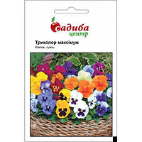Фиалка (Виола) Триколор Максимум F2 Смесь, Hem Zaden (Садыба Центр), 0,05 грамм