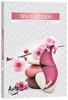 Аромасвеча чайная спа сад (6шт)
