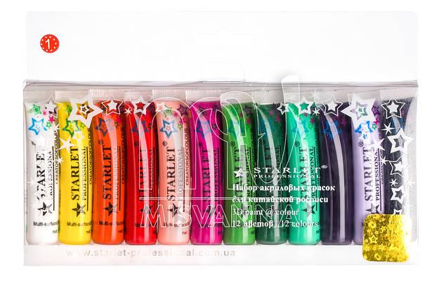 Акриловые краски набор Starlet Professional №1 12 шт по 12 мл, фото 2