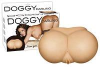 Вагина и анус Doggy Darling