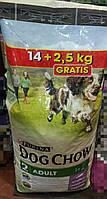 Дог Чау сухий корм для собак зі смаком ягнятини 14+2.5 кг в подарунок