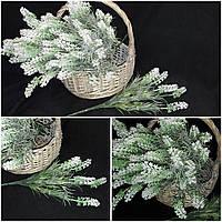 Белая лаванда, выс. 35 см., 5 веток, 40/30 (цена за 1 пуч. + 10 гр.)