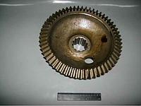 Шестерня ведомая ПВМ трактора МТЗ-82 (72-2308062)