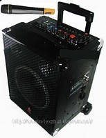 Громкоговорители, Мегафон AMC Veini 888-3