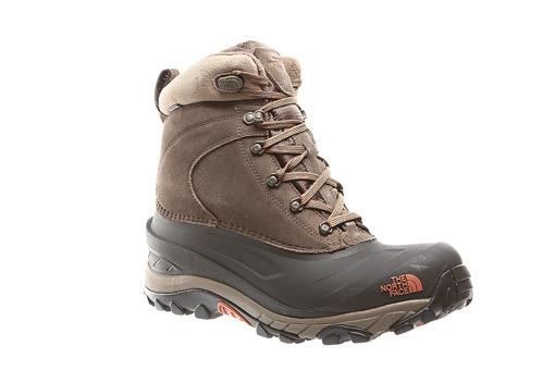 446e95b4f Оригинальные мужские ботинки The North Face Back Chilkat III, цена 3 400  грн., купить в Львове — Prom.ua (ID#615189816)