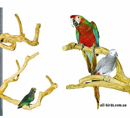 Ігрові стенди для папуг і птахів