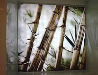Стеклянные панели с подсветкой, фото 1