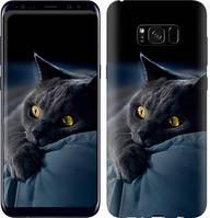 """Чехол на Samsung Galaxy S8 Plus Дымчатый кот """"825c-817-481"""""""