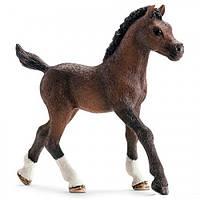 Арабский жеребенок - игрушка-фигурка, Schleich