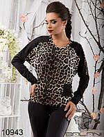 Женский стильный свитшот  -  10943 р-р S   M женская одежда  в интернет магазине. Украина