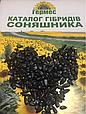 Семена подсолнечника Антей (экст) , фото 2