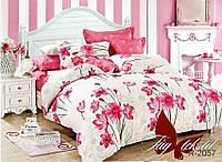 Комплект постельного белья с компаньоном R2057 двуспальный (TAG(2-sp)-440)