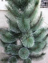 Новогодняя искусственная сосна 2 метра  с имитацией инея, фото 3