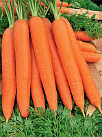 Семена моркови Красная без сердцевины дражированная 100г