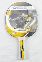 Ракетка для настільного тенісу DONIC 300 APPELGREN 703029 39ab2221b5667