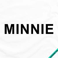 Термоперевод для бизнеса на сатин надпись Minni [7 размеров в ассортименте] (Тип материала Флок)