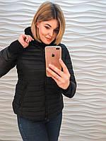 Женская модная куртка осень/весна больших размеров (2 цвета)