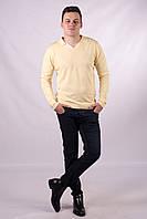Полувер ворот-поло мужская бренд BILLIONAIRE с цветной вставкой на мысе