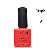 Shellac Tropix коралловый, красно-рыжий