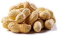 Арахіс в шкаралупі / арахис в скорлупе