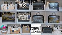 CAVALLI CLASS Женские кошельки