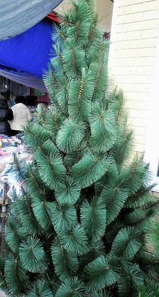 Искусственная елка 0.9 метра , сосна крымская пушистая, фото 2