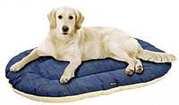 Зачем нужен лежак для собаки?
