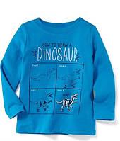 Трикотажный стильный реглан с динозаврами для мальчика, разные размеры