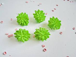 Сукулент малий салатовий латекс 3 см
