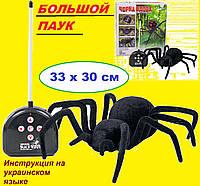 Паук на радиоуправлении Черная вдова. Робот паук. Большой паук с пультом.