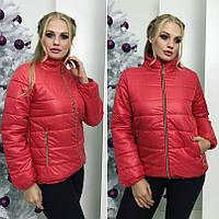 Женская зимняя короткая куртка БАТАЛ