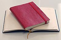 Ежедневник не датированный