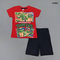 """Летний костюм """"Черепашки Ниндзя"""" для мальчика. 86, 92 см, фото 1"""