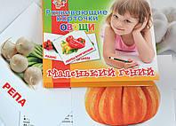 """Набор развивающих карточек """"Овощи"""" 951299 1 Вересня, 15 шт"""