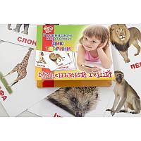 """Набор развивающих карточек """"Дикие животные"""" 951906 1 Вересня, 15 шт"""