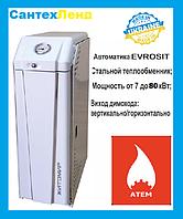 Котел газовый Житомир-3 КС-ГВ-007 СН (двухконтурный)