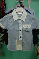 Летняя рубашка Bimbus для мальчика, фото 1