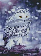 """Набор для вышивания """"Hedwig"""", фото 1"""