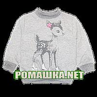 Детский плотный джемпер (свитшот) р. 104 ткань ФУТЕР 100% хлопок 3874 Серый