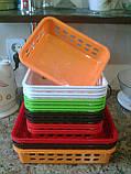 Кухонный лоток-органайзер 25.5х19х6 см, фото 3