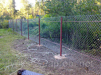 Забор для дачи сетка-Рабица