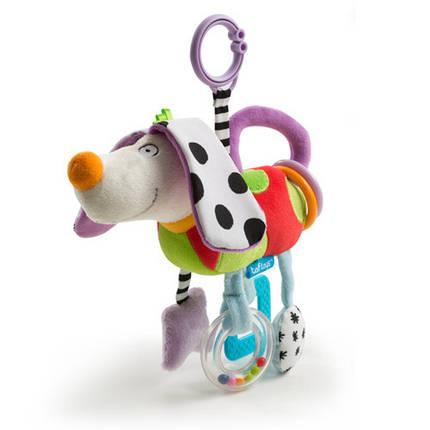 Развивающая игрушка-подвеска - СМЫШЛЕНЫЙ ПЕСИК 11695 Taf Toys, фото 2