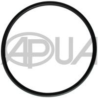 Прокладка уплотнения корпуса большого фильтра опрыскивателя Agroplast (Агропласт)