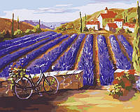 Картина по номерам Лето в Провансе (AS0032) 40 х 50 см ArtStory