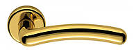 Ручка дверная на розетке Colombo Sirio CD 11 полированная латунь (Италия)