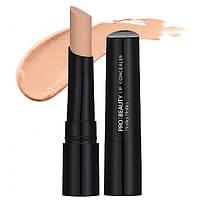 Консилер для губ Holika Holika  Pro:Beauty Kissable Lip Concealer - 20015484