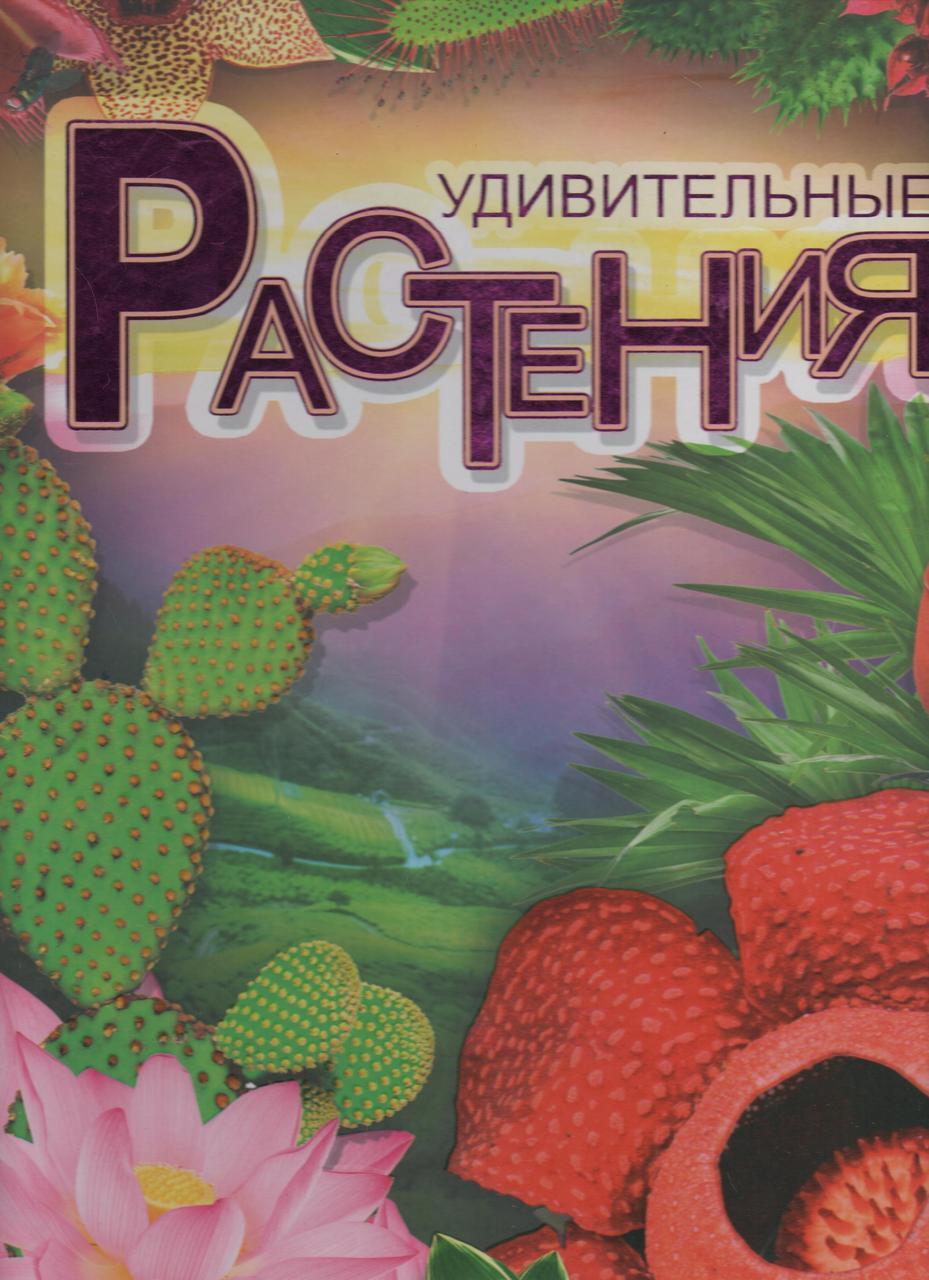 Удивительные растения. Иллюстрированная энциклопедия. В. В. Борзова