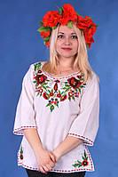 Жіноча вишиванка № 1221