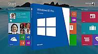 Microsoft Windows 8.1 Pro x64, English, DVD, OEM (FQC-06949)
